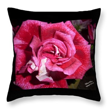 Red Beauty 2  Throw Pillow