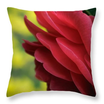 Red Beauty Throw Pillow by James Barber
