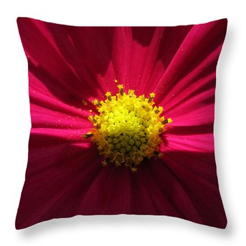 Throw Pillow featuring the photograph Red Beauty by Tina M Wenger