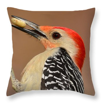 Red Bellied Woodpecker Closeup Throw Pillow by Kathy Baccari