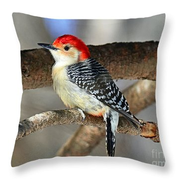 Throw Pillow featuring the photograph Red-bellied Woodpecker by Rodney Campbell