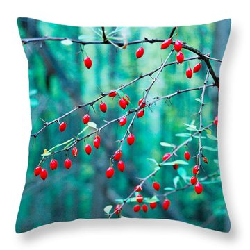 Red Berries In October Throw Pillow