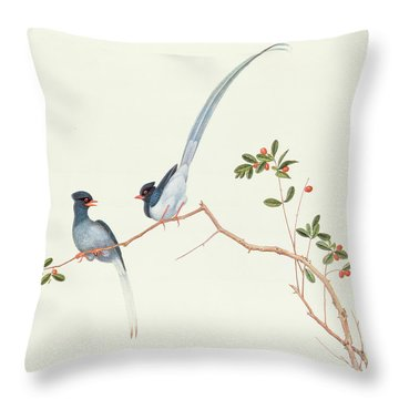Red Billed Blue Magpies On A Branch With Red Berries Throw Pillow by Chinese School