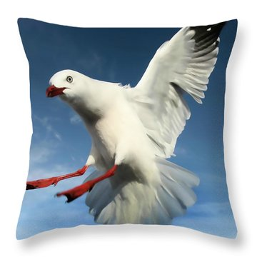 Red Billed Seagull  Throw Pillow by Amanda Stadther