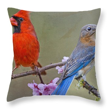 Red Bird Blue Bird Throw Pillow