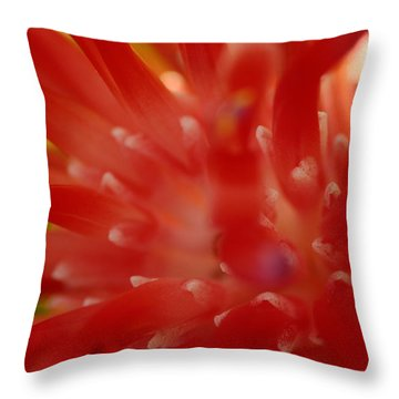 Throw Pillow featuring the photograph Red Bromeliad by Greg Allore