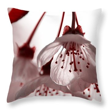 Throw Pillow featuring the photograph Red Bud by Aaron Berg