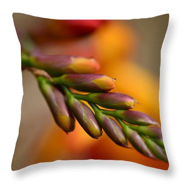 Red Buds Macro Throw Pillow