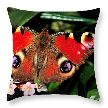 Red Butterfly In The Garden Throw Pillow