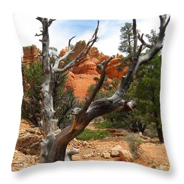 Red Canyon Tree And Rocks Throw Pillow by Debra Thompson