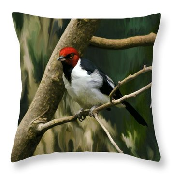 Throw Pillow featuring the photograph Red-capped Cardinal by Adam Olsen