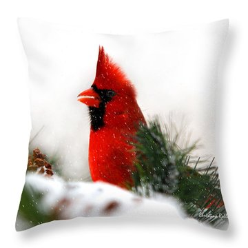 Red Cardinal Throw Pillow by Christina Rollo