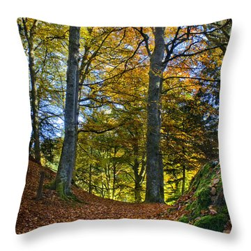 Red Carpet In Reelig Glen During Autumn Throw Pillow