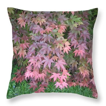 Red Cascades Into Green Throw Pillow