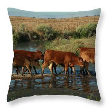 Red Cattle Throw Pillow