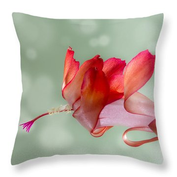 Red Christmas Cactus Bloom Throw Pillow