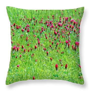 Red Clover Field Throw Pillow by Deborah  Crew-Johnson