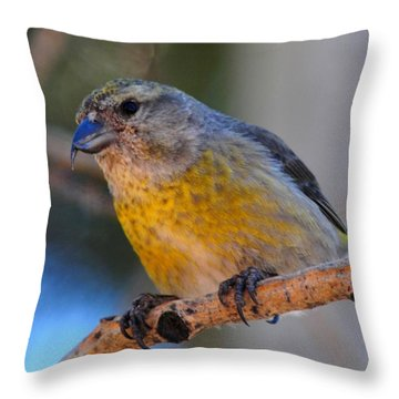 Red Crossbill Female Throw Pillow