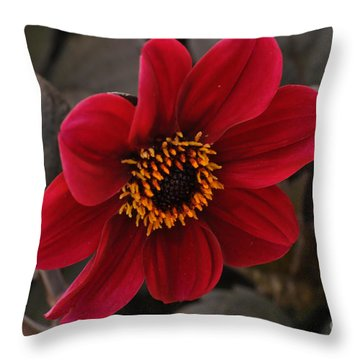 Red Dahlia Throw Pillow