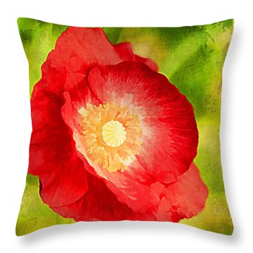 RED Throw Pillow by Darren Fisher