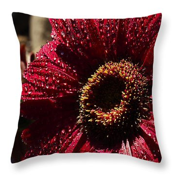 Throw Pillow featuring the photograph Red Dew by Joe Schofield