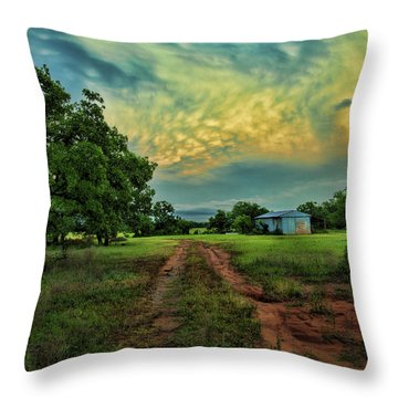 Red Dirt Road Throw Pillow by Toni Hopper