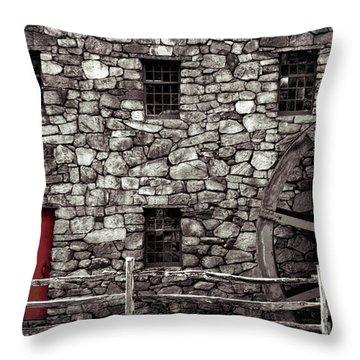 Red Door Throw Pillow by Jayne Carney