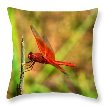 Red Dragon Dreams Throw Pillow