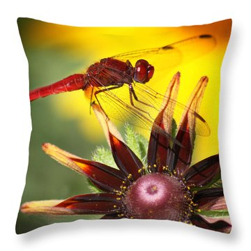 Red Dragonfly Throw Pillow by Martina  Rathgens