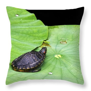Red-eared Slider Throw Pillow by Greg Reed