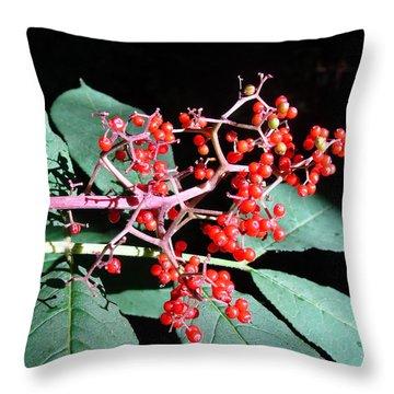 Red Elderberry Throw Pillow by Cheryl Hoyle
