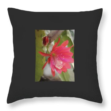 Red Epiphyllum Study Throw Pillow
