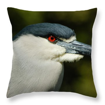 Throw Pillow featuring the photograph Red Eye - Black-crowned Night Heron Portrait by Georgia Mizuleva