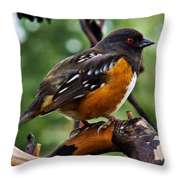 Red Eye Special Throw Pillow