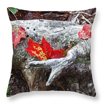 Red Fall Against Grey Throw Pillow