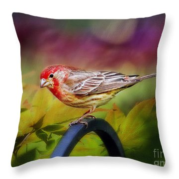 Red Finch Throw Pillow