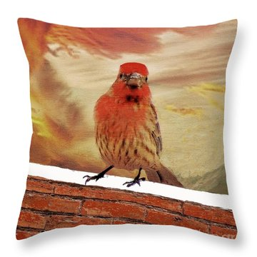 Red Finch On Red Brick Throw Pillow