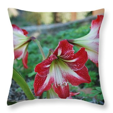 Red Flower 1 Throw Pillow