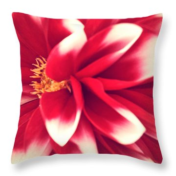 Red Flower Throw Pillow by Beril Sirmacek