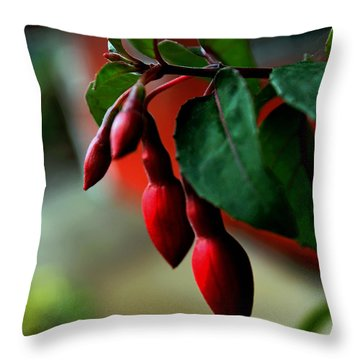 Red Flower Buds Throw Pillow by Pamela Walton