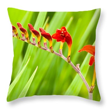 Red Flower Family Throw Pillow
