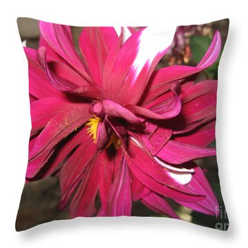Red Flower In Bloom Throw Pillow