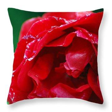 Throw Pillow featuring the photograph Red Flower Wet by Matt Harang