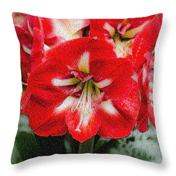 Red Flower With Starburst Throw Pillow by Crystal Wightman