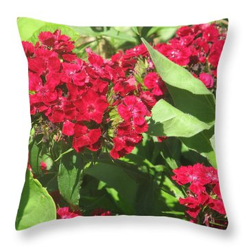 Throw Pillow featuring the photograph Red Flowers And Green Leaves by Tina M Wenger