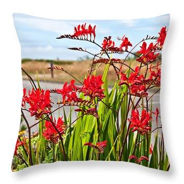 Red Flowers Crocosmia Lucifer Montbretia Plant Art Prints Throw Pillow