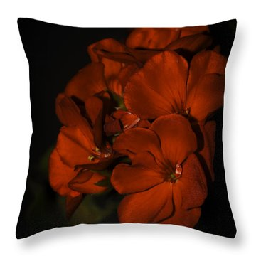 Throw Pillow featuring the photograph Red Flowers In Evening Light by Lucinda Walter