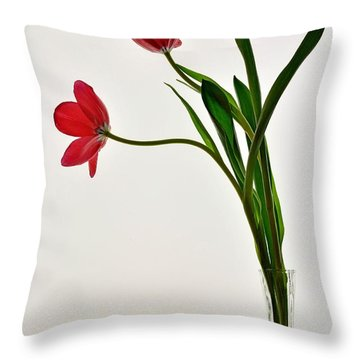 Red Flowers In Glass Vase Throw Pillow