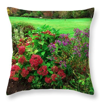 Red Flowers In The Skylands Throw Pillow