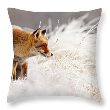 Red Fox And Hoar Frost _ The Catcher In The Rime Throw Pillow